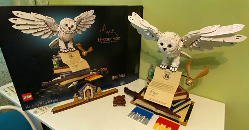 Read more about the article Tombola LEGO Harry Potter 76391